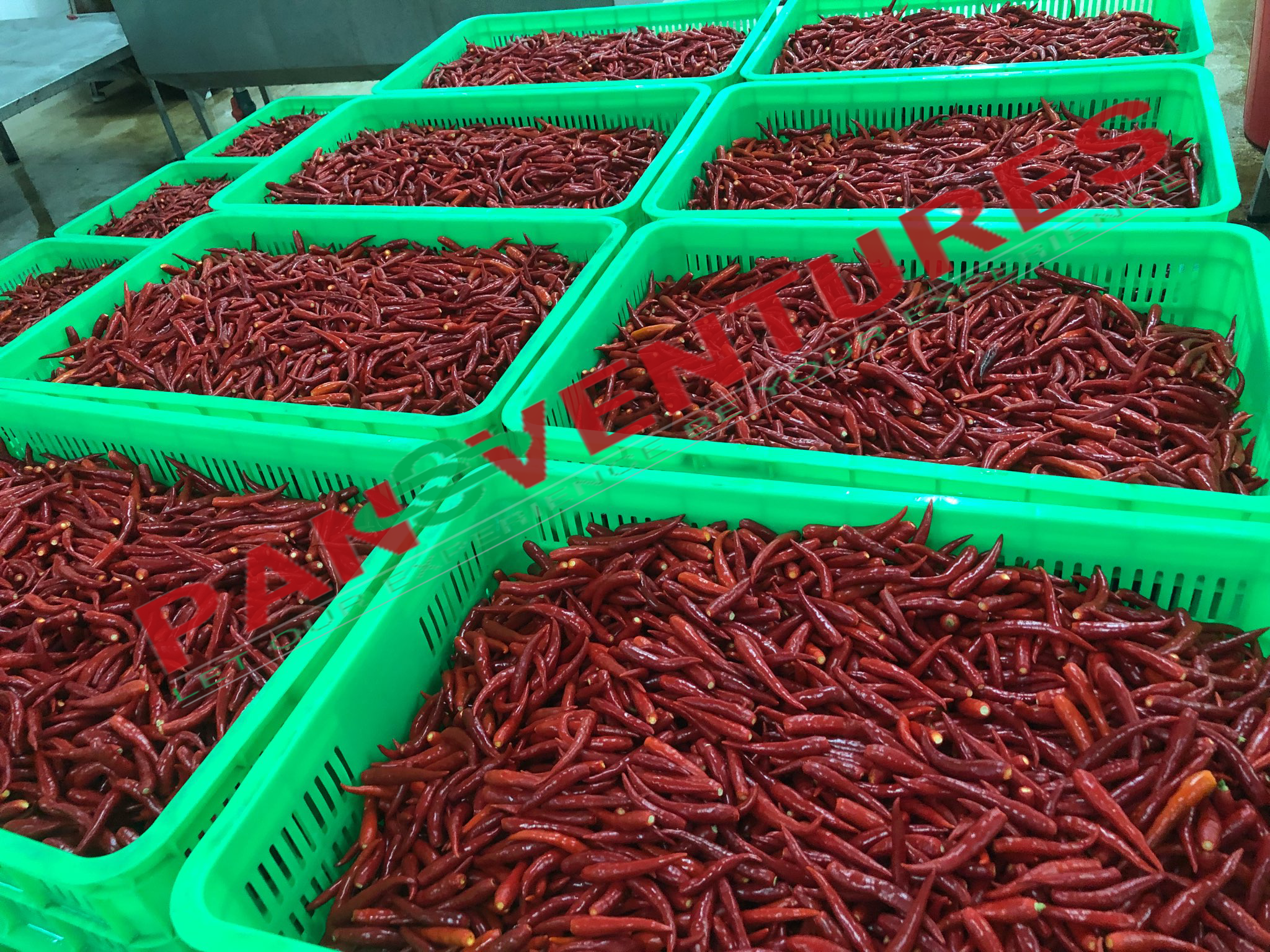 Japanese market is strict market for Chili but we succeeded to meet their demand